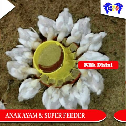 super-feeder-2
