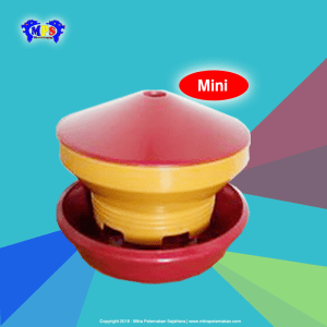 Baby chick feeder Mini grade A1 - punos