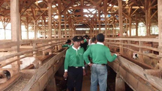 Perluas Usaha Dengan Bermitra – CV. Mitra Tani Farm