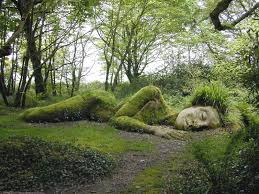 Fake photo of the garden on the internet