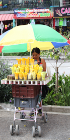 Local vendor selling fruits (mangoes, watermelons, etc.)