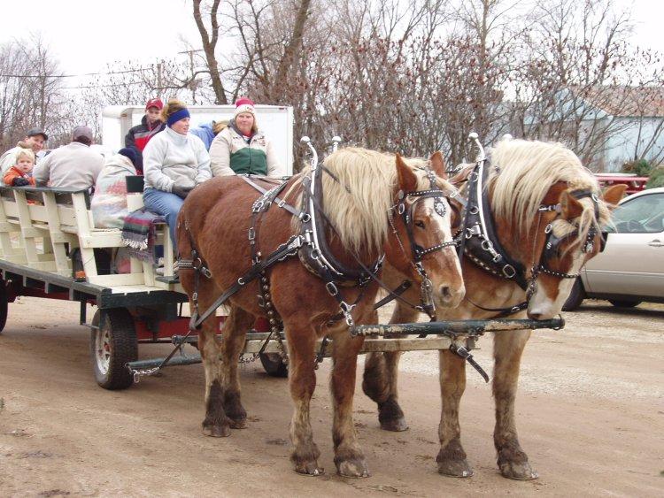 Horse & Wagon Rides