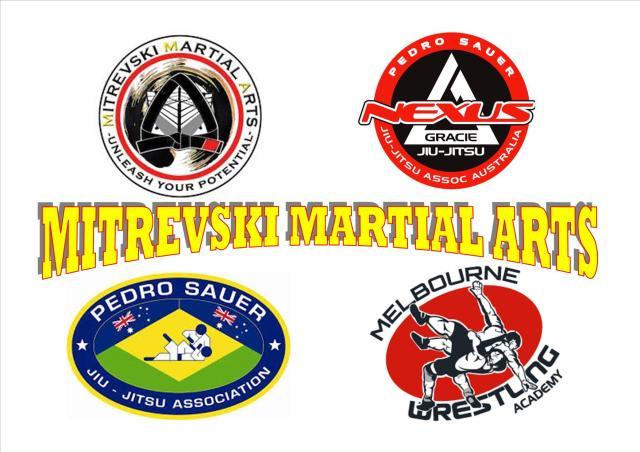 MITREVSKI MARTIAL ARTS AFFILIATIONS