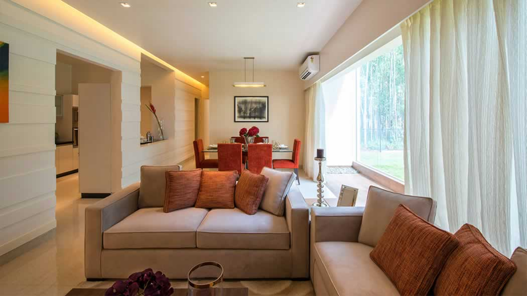 Top Indoor Plants Suited For Any Indian Apartment Mittal Elanza