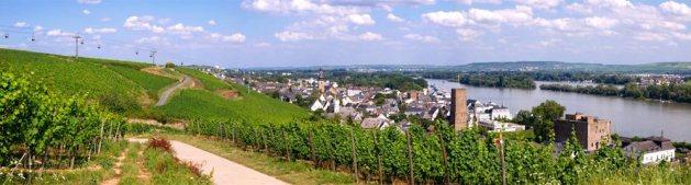 Rüdesheim-Panorama. Foto: Rüdesheim Touristik / Karlheinz Walter.
