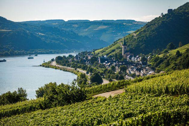 Blick auf Lorch. Foto: Romantischer Rhein Tourismus / Henry Tornow
