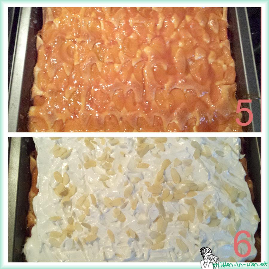 marillenkuchen2