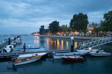 Morgenstund mellom fiskebåtene og salgshallene, bak trærne. Denne lille havnen er vel for de som kan regnes for hobbyfiskere.