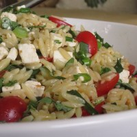 Orzo with Tomatoes, Feta and Green Onions