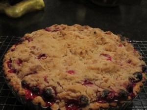 Baked Cranberry Crumb Tart!