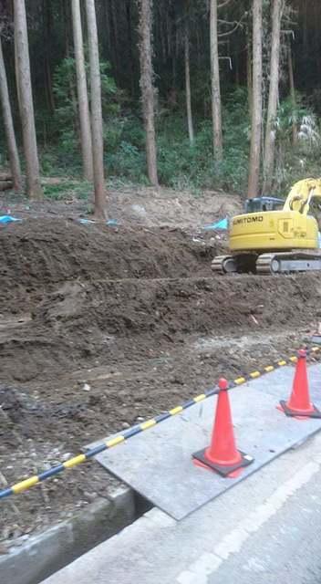 大澤土砂崩れ 向かい側.jpg