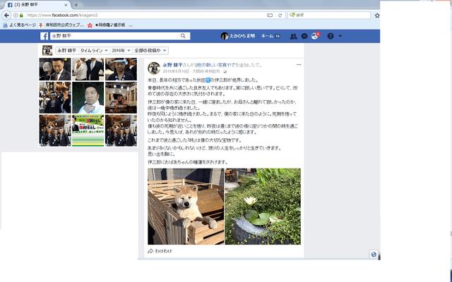 永野耕平 秋田犬.png