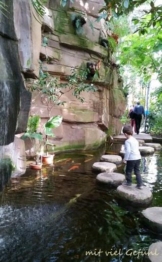 26. Wasserfall