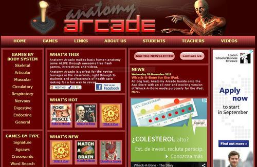 anatomy arcade screenshot