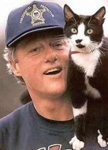 gato-clinton