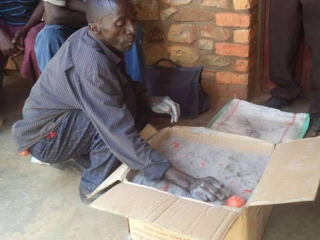 conservation des tomates - miwoèGroup _ Brice Apekomess