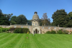 Pineapple-House