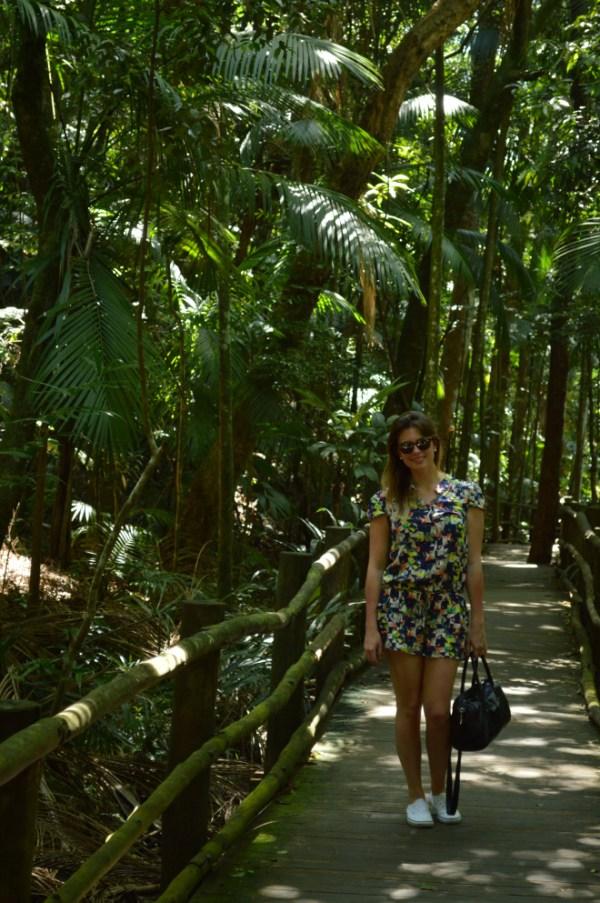 Jardim Botânico São paulo 2