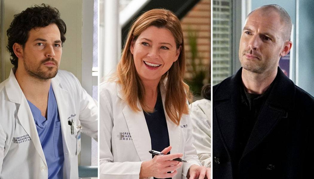 Grey's Anatomy 17 temporada