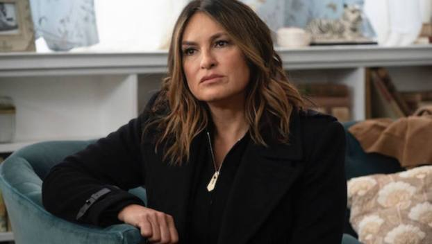 Solving for the Unknowns, Law & Order - SVU