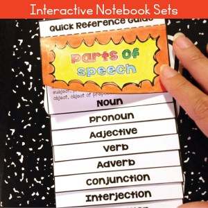 Interactive Notebook Sets