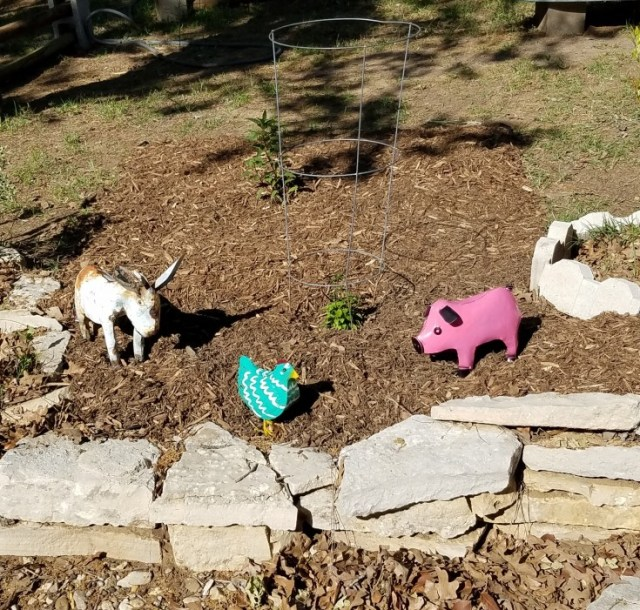 Wimberley Trip, and Junkin at Antique Alley | metal pig, and chicken