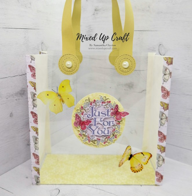 Clear Acetate Gift Bag