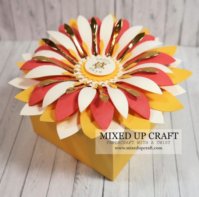 Pretty Swivel Lid Gift Boxes