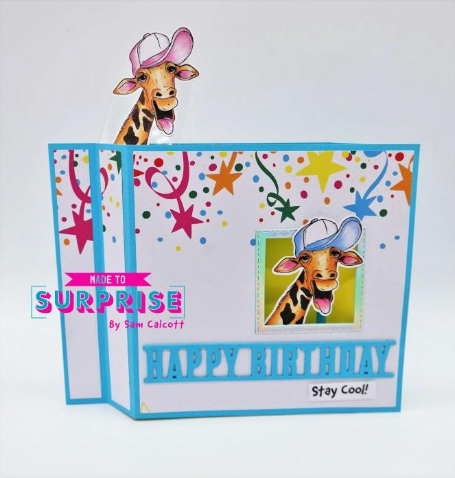 Comical 6 x 6 Wiper Card