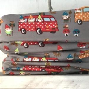 Colsjaaltje Grey Minivan