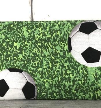 Etui met voetballen