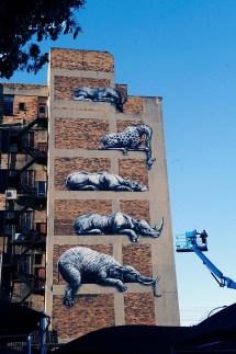 Roa http://creativeroots.org/2012/10/african-street-art/