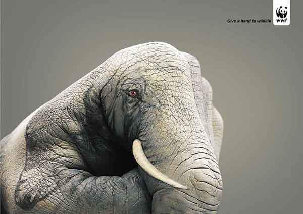 public-social-ads-animals-13