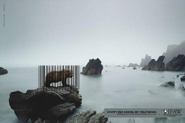 public-social-ads-animals-33