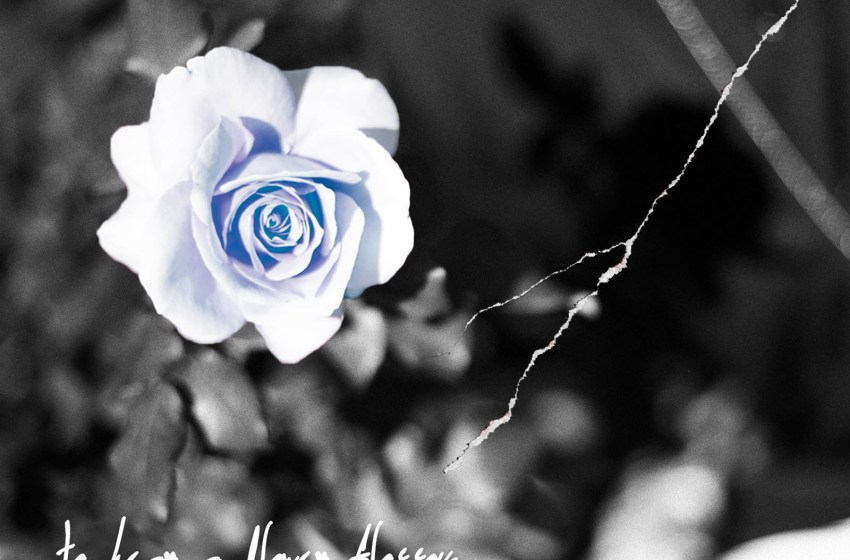 Phre Rhyter – to hear a flower blossom (Instrumental Mixtape)