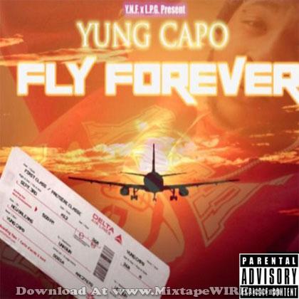 Fly-Forever