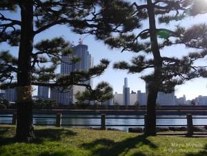浜離宮恩賜庭園 2015.12.20 東京都港区