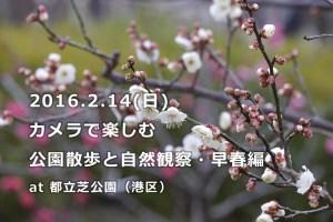 160214shiba_park