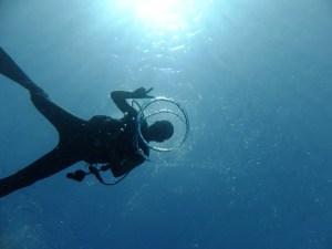 宮古島 ダイビング