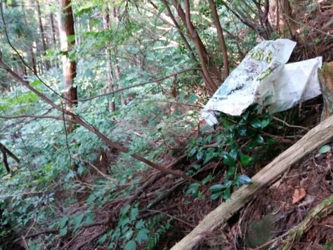 山のゴミ 所有林の確認