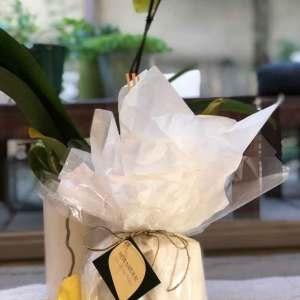 מארז מתנה לבישום הבית Lily Of The Valley