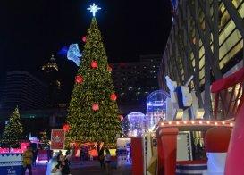 Bangkok-Christmas-tree