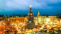 Giant-Christmas-tree-in-Germany