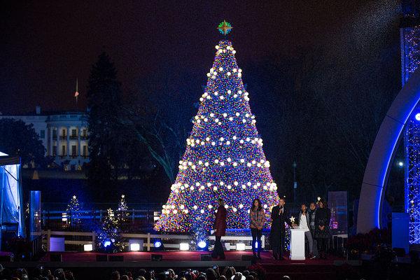 National-Christmas-tree-in-Washington-D.C.