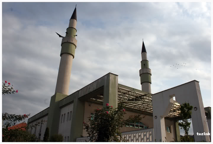 Izabrani sabornici s područja Muftijstva tuzlanskog