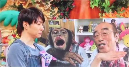 相葉雅紀が志村どうぶつ園で号泣しながらコメントした動画が泣ける