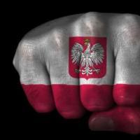 JAK ELIMINOWAĆ Z POLITYKI POLSKIEJ - IDIOTÓW ŁAJDAKÓW ZŁODZIEI I INNEJ SWOŁOCZY