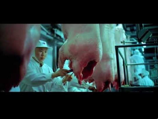 Chińskie fabryki mięsa – SZOK!!!