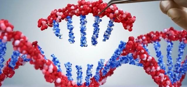 Powikłania poszczepienne można skutecznie wyleczyć metodami epigenetycznymi – dr Nika