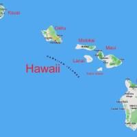 Pozew zbiorowy przeciwko amerykańskiemu stanowi Hawaje: 45 000 zgonów zaszczepionych w ciągu 72 godzin